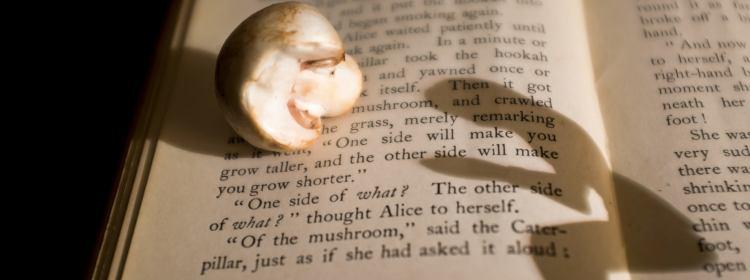 Killy Ridols Reading Alice's