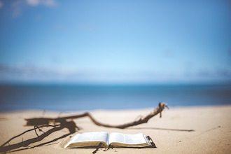Summer twylls - libro dell'estate